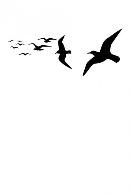 Ято птици